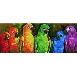 Diamond Dotz - Rainbow Parrots