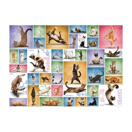 Eurographics - Yoga Cats - 0953