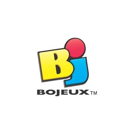 4 pions et 1 dé - Bojeux