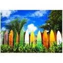 Eurographics - Surfer's Paradise Hawai - 0550