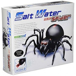 Salt Water Fuel Cell Spider