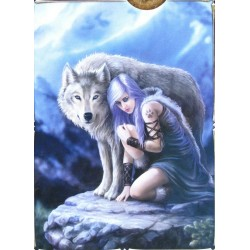 Clementoni 394654 - Anne Stokes - The protector