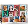 Eurographics - Funny Cats - 5522